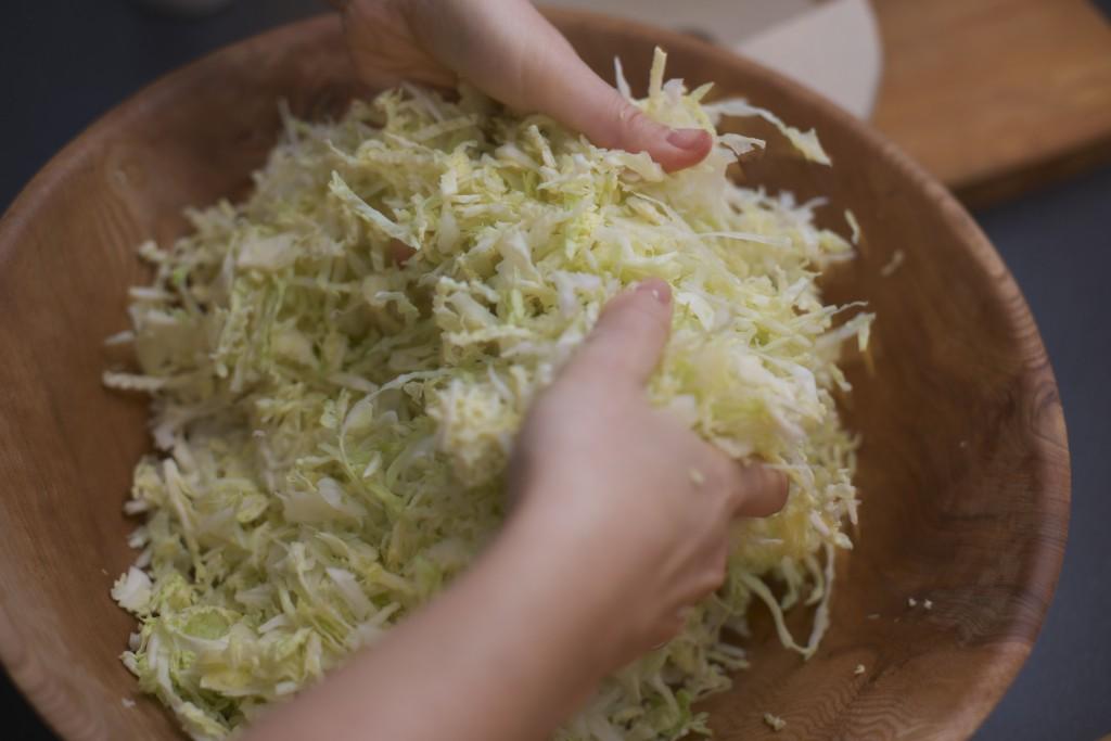 Fermentering Surkål Sauerkraut