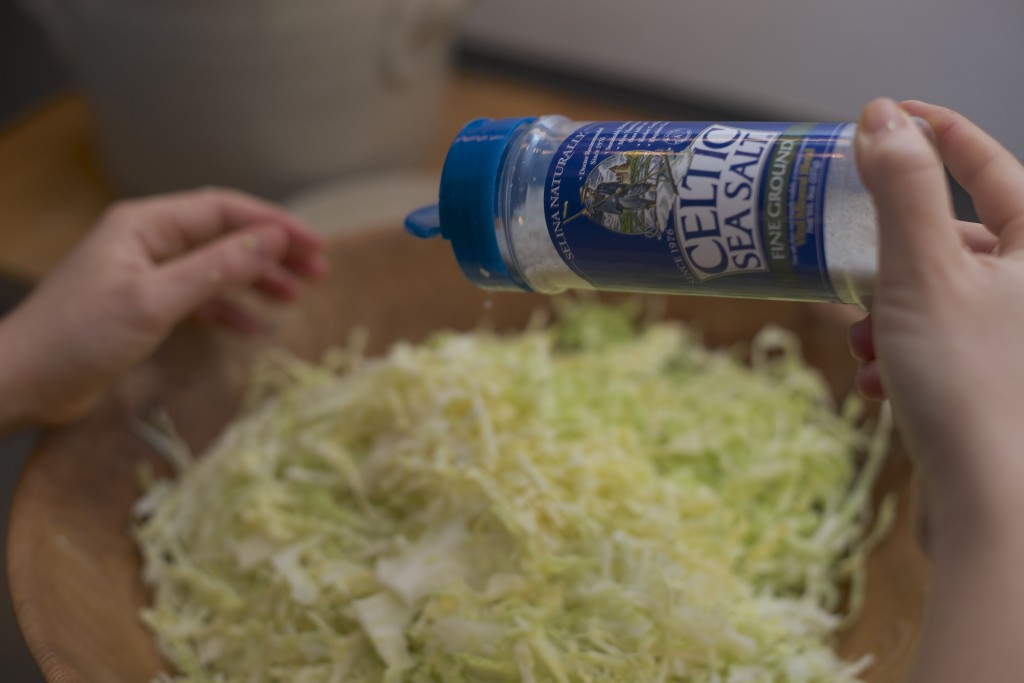 fermentering Celtic Sea Salt Havsalt