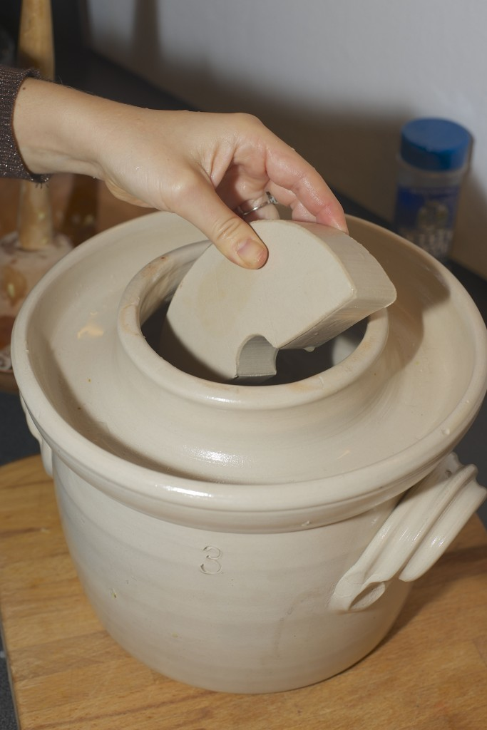 fermenteringskrukke vektsten