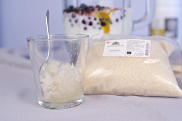 økologisk gelatin gelatintilskudd