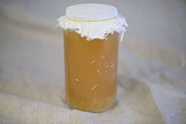 fermentere vannkefir