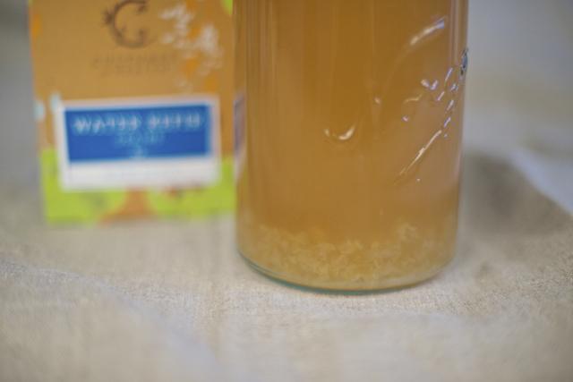 fermentering av vannkefir