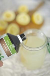 tilsette vita biosa i limonade før fermentering
